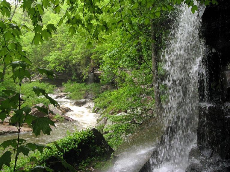 Bear Creek waterfall