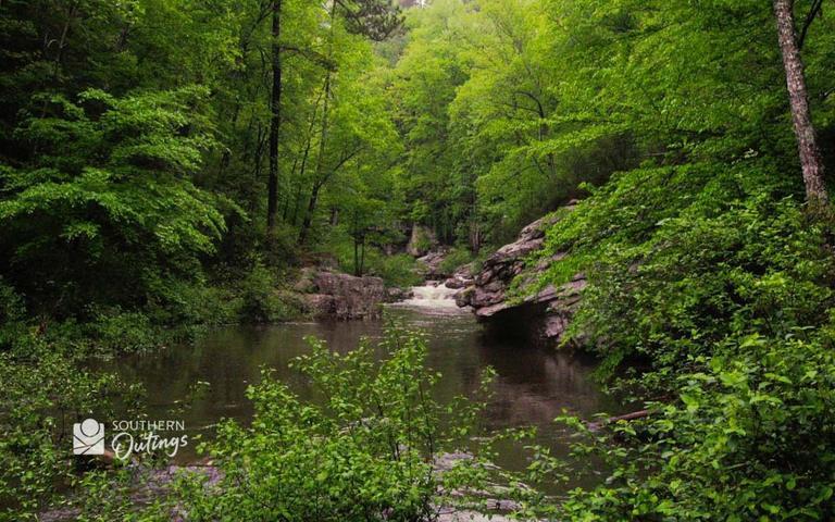Bear Creek pic