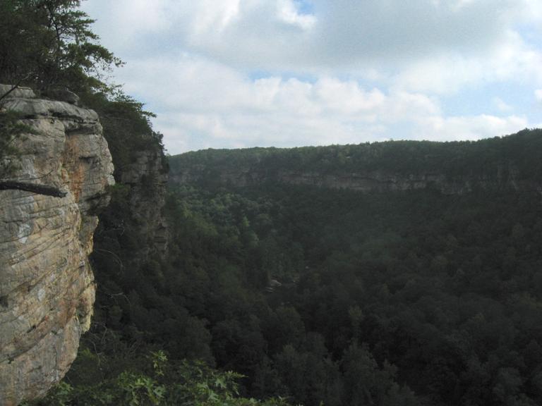 Overlook view